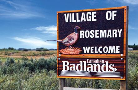 Rosemary Distillery